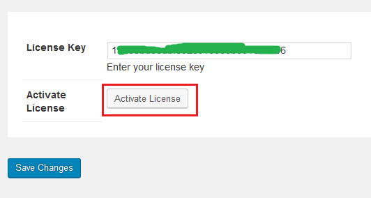 Activate license